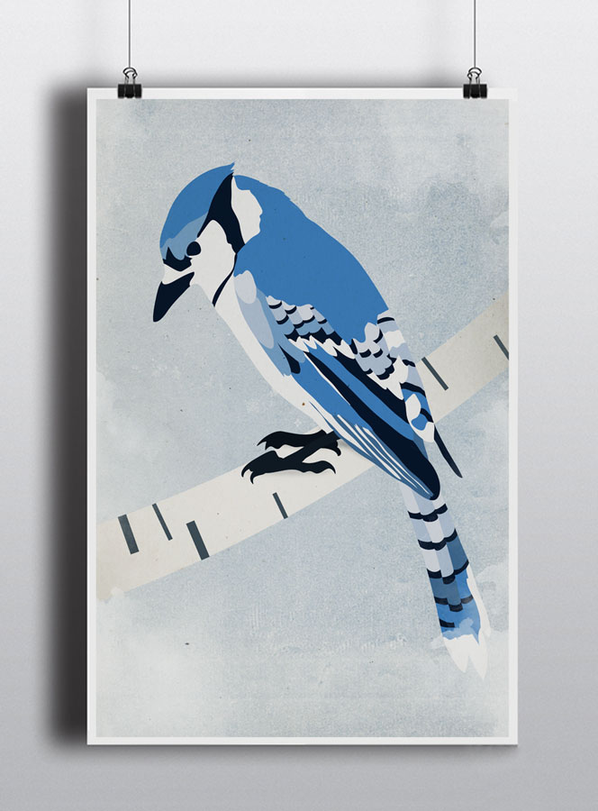 Life lurking bluejay poster
