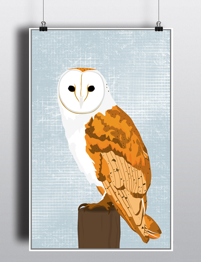 Barn Owl Poster by life lurking