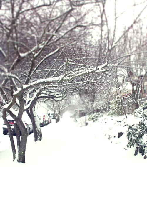 Winter in Seattle