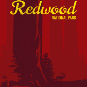 Life Lurking Redwood National Park Poster